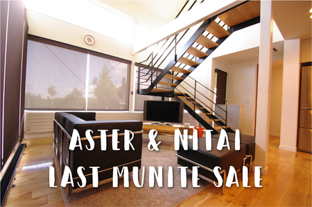 aster&Nitai Last Munite Sale.jpg